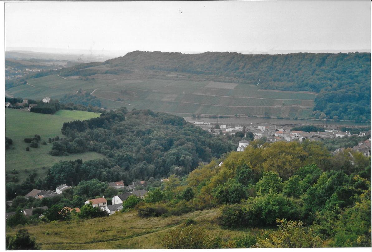 Hammelsberg kirschberg et stromberg