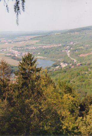 Image1 13