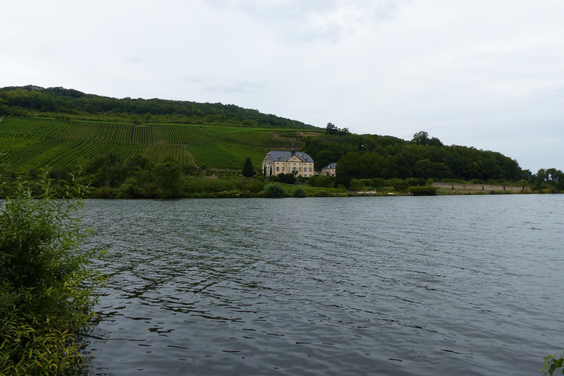 La Moselle en aval de Sierck (Rudling)