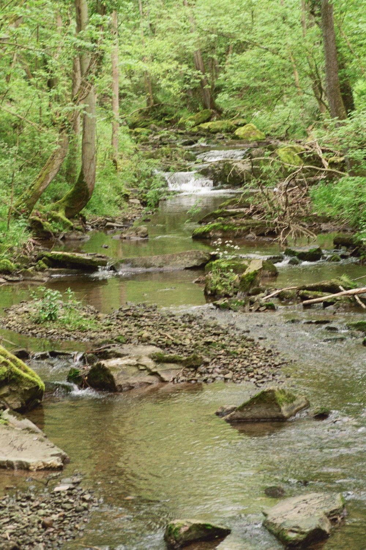 Ruisseaucascades